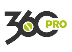 360 Professional LTD
